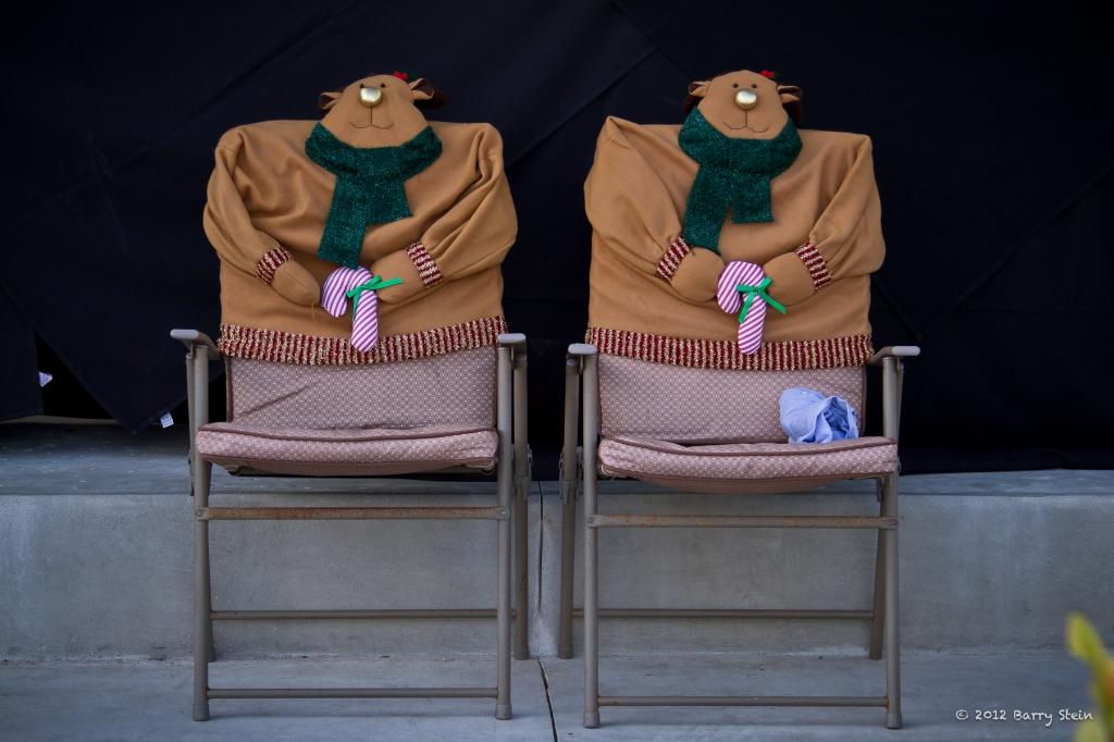 ChairCovers-7604