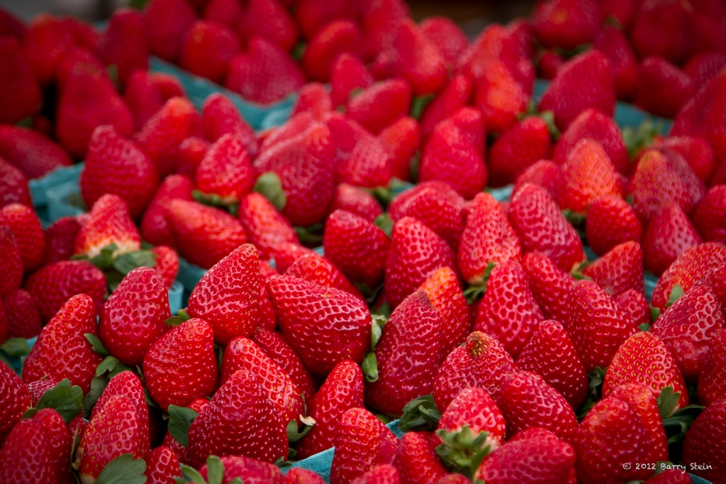 StrawberryFields-8785