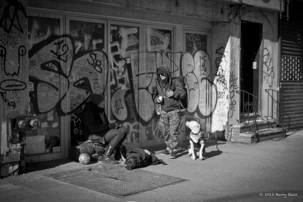 StreetDogs-9459