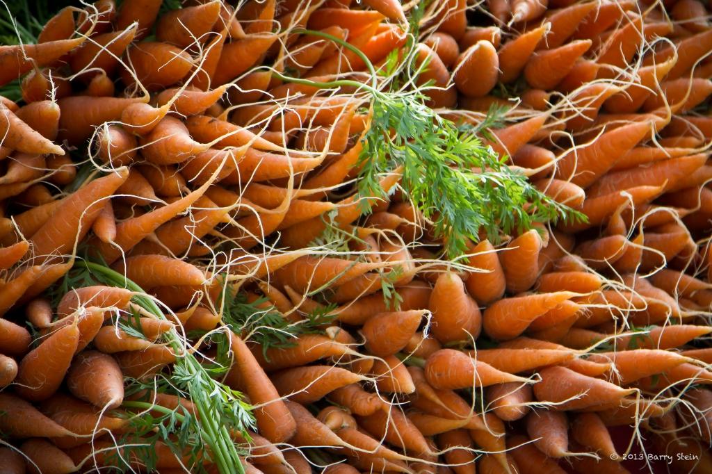 Carrots-9675
