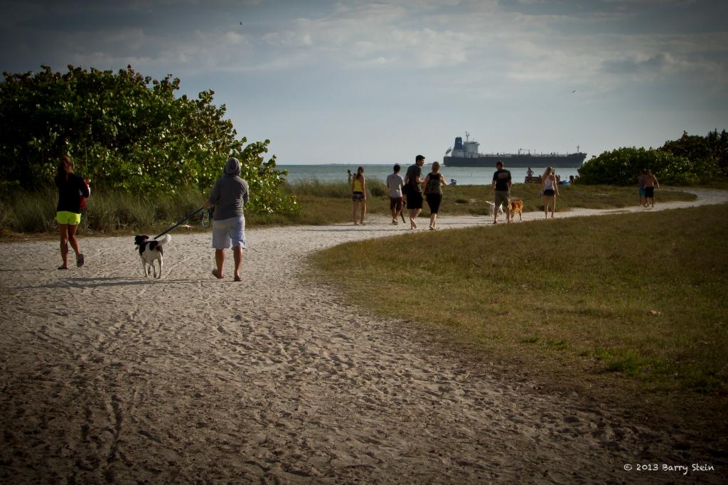 WalkingToTheDogPark-0627