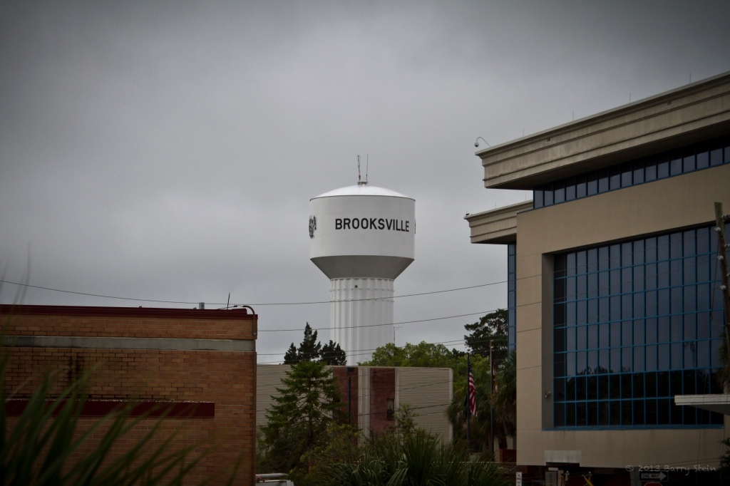 BrooksvilleWaterTower-1116