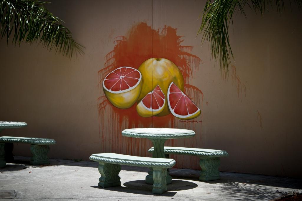 GrapefruitWall-1368