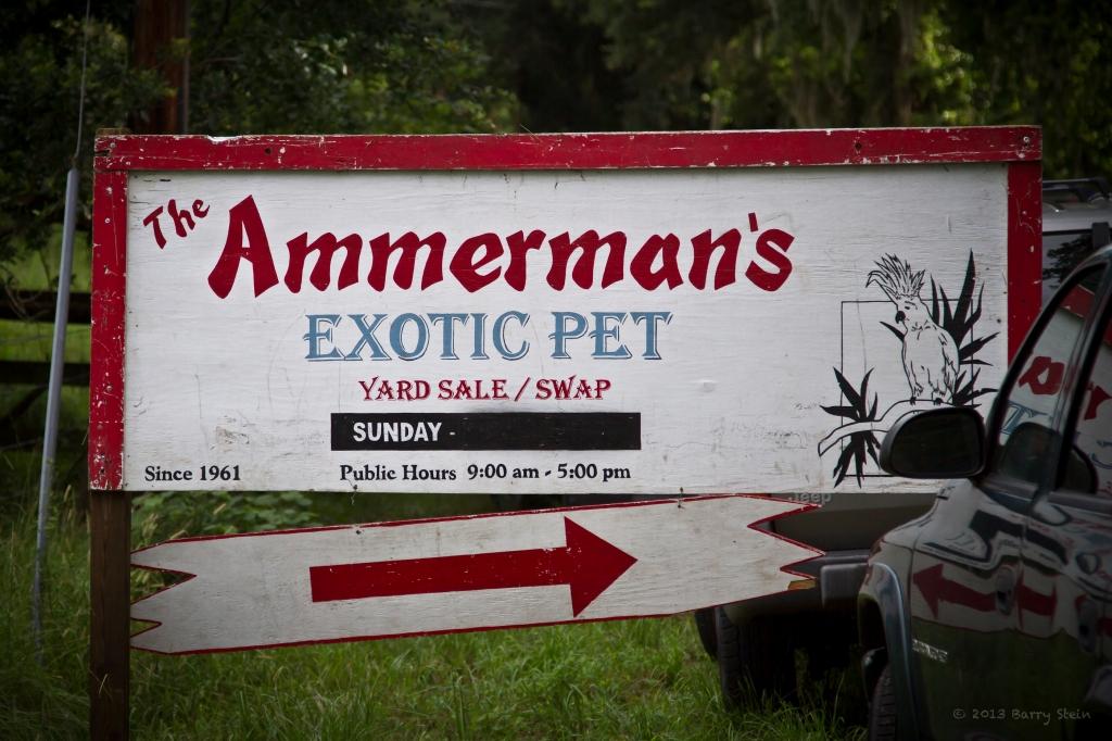 AmmermanSign-3180