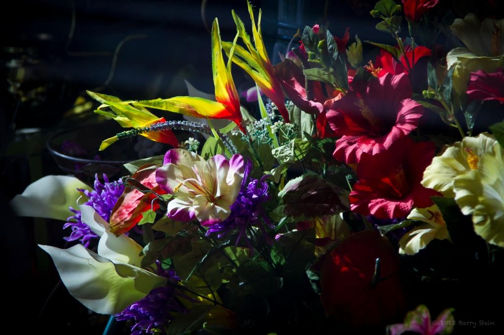 FloristWindowSunset-2605