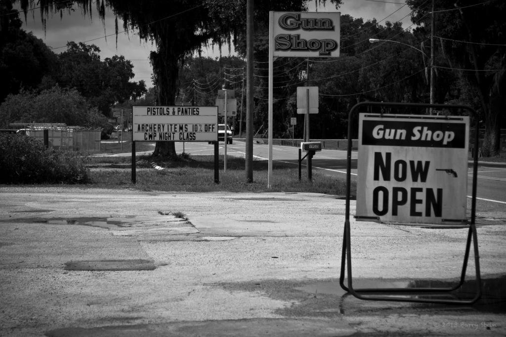 PistolsNPanties2-3569