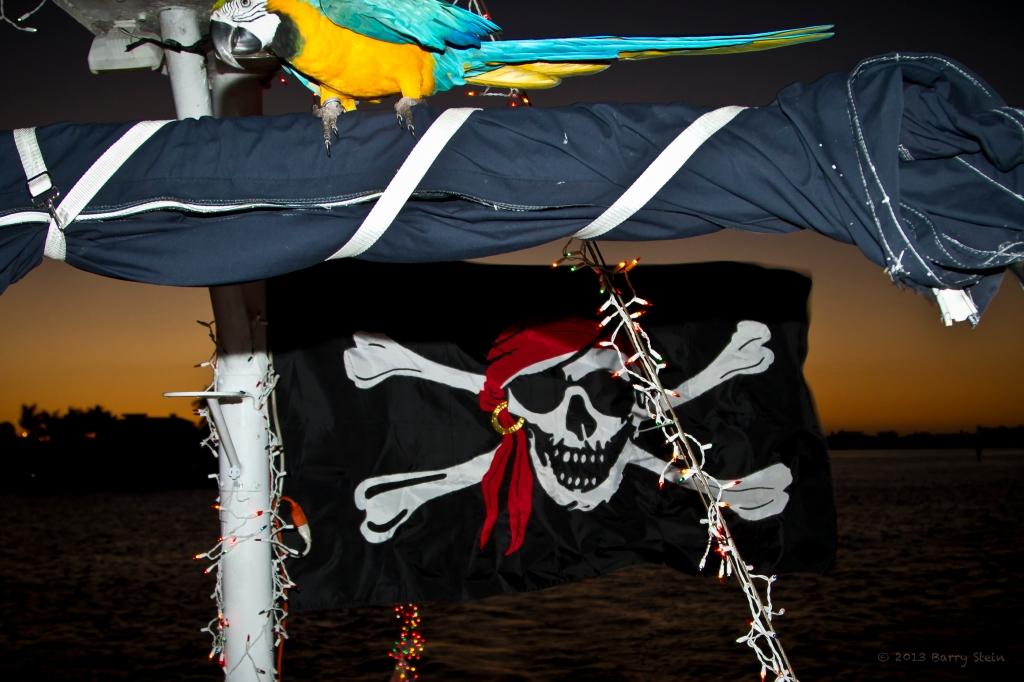 PirateFlag-8179