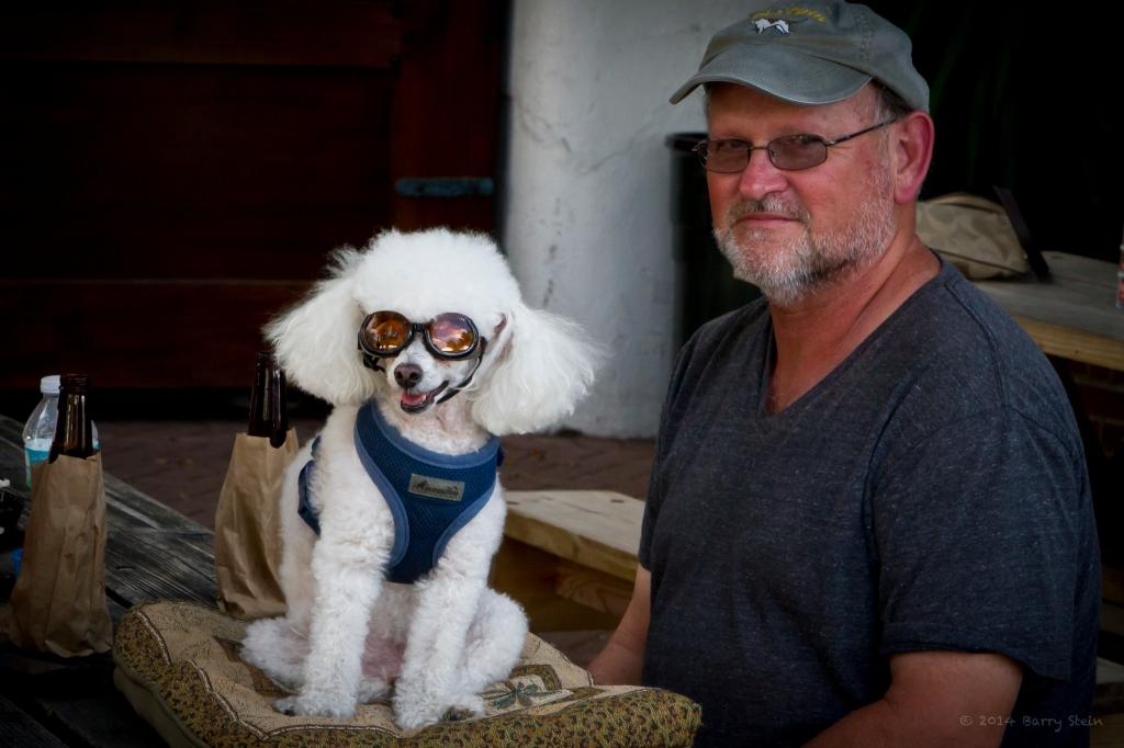 DoggieGoggles-7528